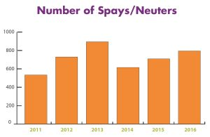 Measuring Our Success in Spays and Neuters at EASEL Animal Rescue League