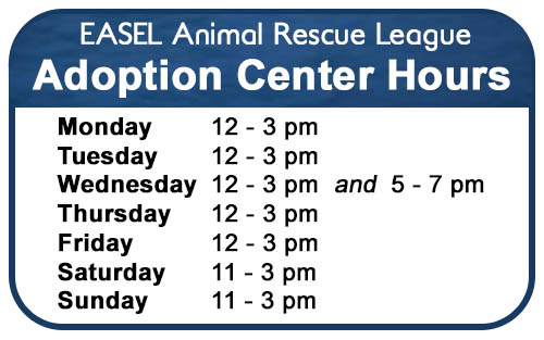 Adoption Center Hours at EASEL Animal Rescue League Shelter